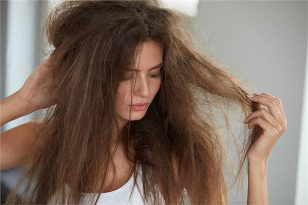 لجمالك وصفة الزبدة والزيوت لتنعيم الشعر الجاف والمجعد