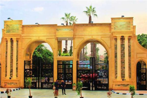 جامعة المنصورة تتوصل لمركب يحمي محصول الفول من آفة مدمرة