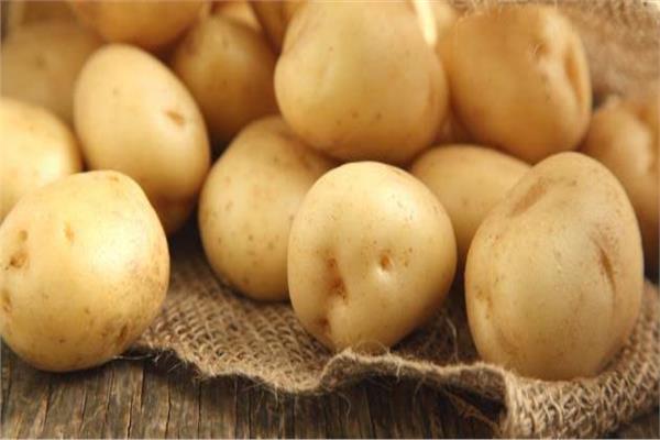 متى تكون البطاطس مليئة بالسموم ويحظر تناولها؟