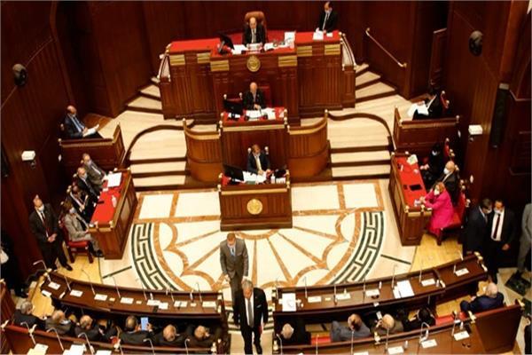 تبدأ اليوم بـ3 جلسات.. جدول أعمال انتخابات اللجان النوعيةلـ«الشيوخ»