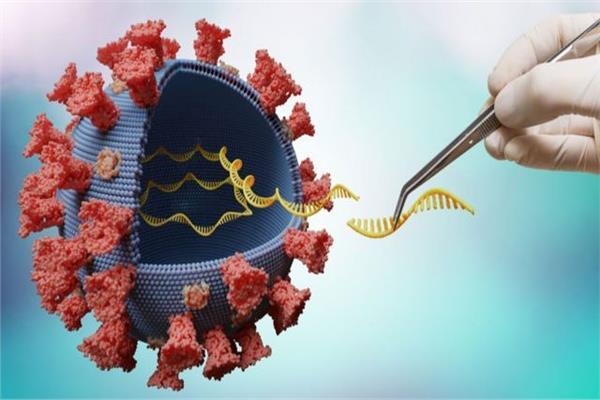أستاذ فيروسات رصد 11 متحورا لفيروس كورونا و«دلتا» الأكثر انتشار فيديو