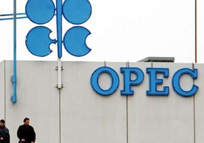 {أوبك} تتوقع زيادة إمدادات النفط من منافسيها 950 ألف برميل يومياً